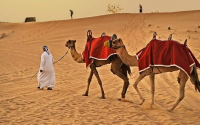 EMW - Emirates - Main Picture